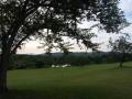 view-golfcourse